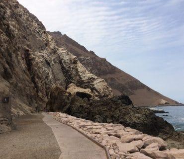 Nueva ruta potencia raíces chinchorro en Arica