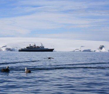 Shackleton y yo nos encontramos en la Antártida